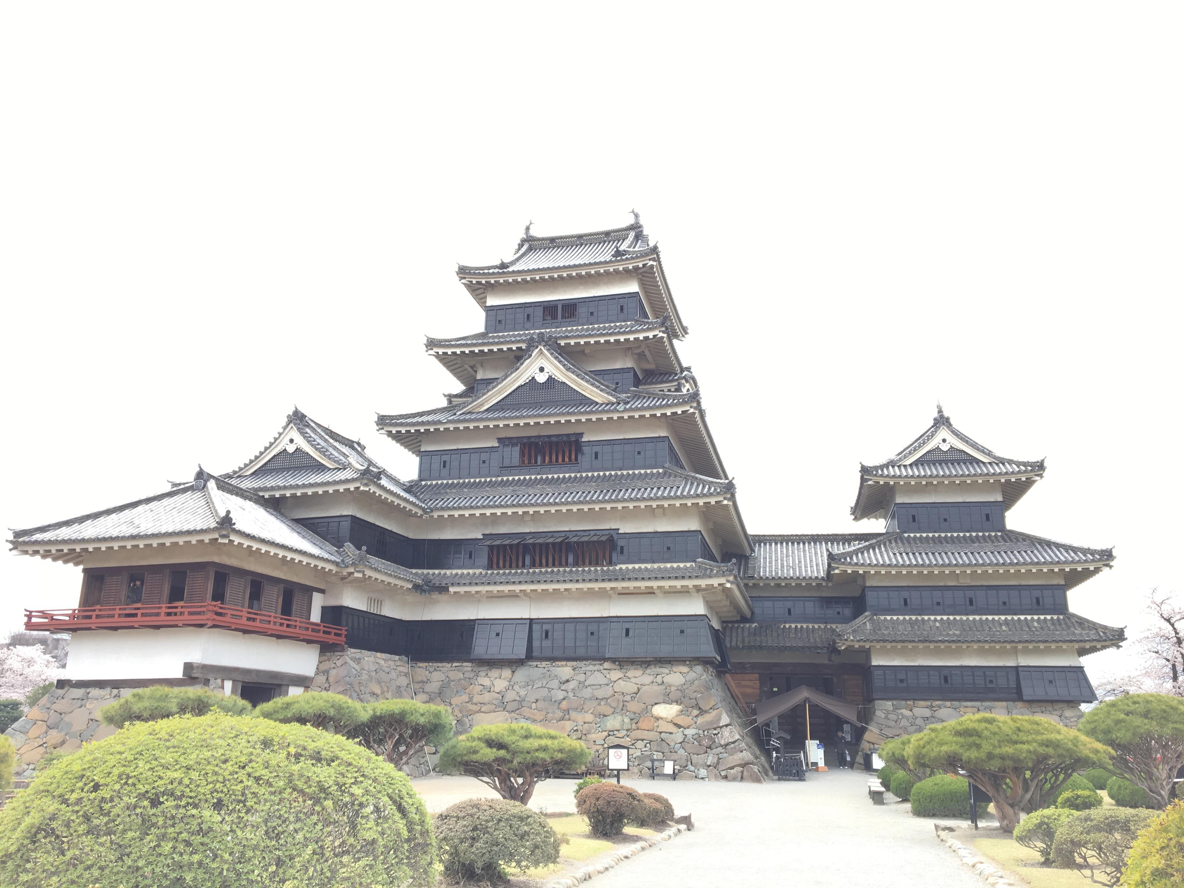 【松本城】国宝の漆喰を見学