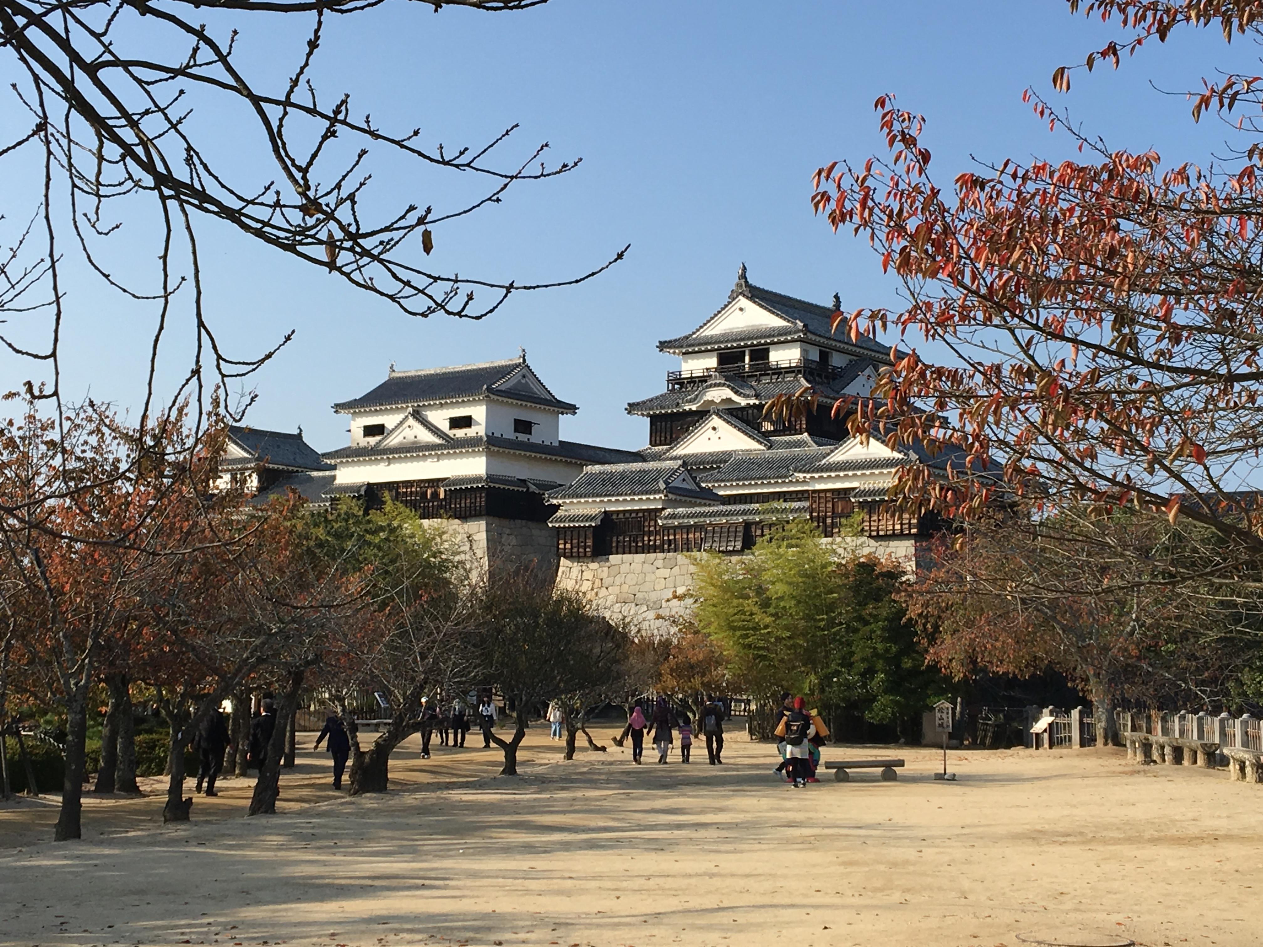 【重要文化財】松山市の代表的な漆喰壁!本丸天守の漆喰壁を見てきた。