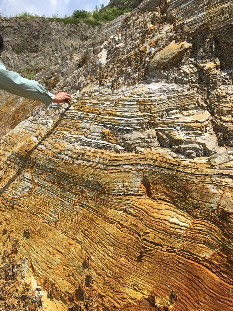 珪藻土とは|メリット、デメリット基礎知識のまとめ